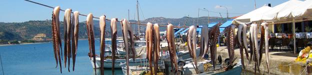 Tintenfische in Gythio
