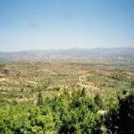 Perfekter Ausblick von Mistras über die Ebene von Sparta.